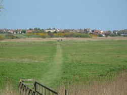 Return to Southwold