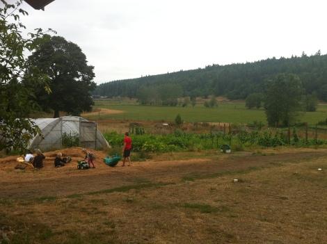 Finn River Farm
