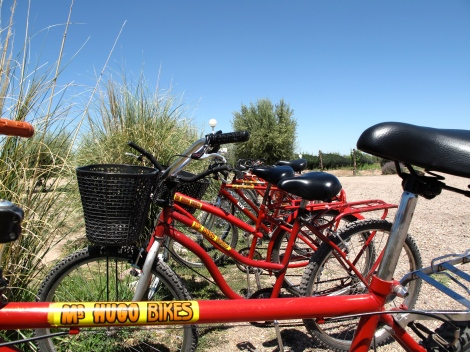 The very popular Mr. Hugo's bikes at Mevi winery